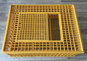 Egg tray and chicken case