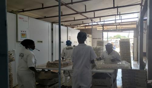 Visit customer in Moshi Tanzania